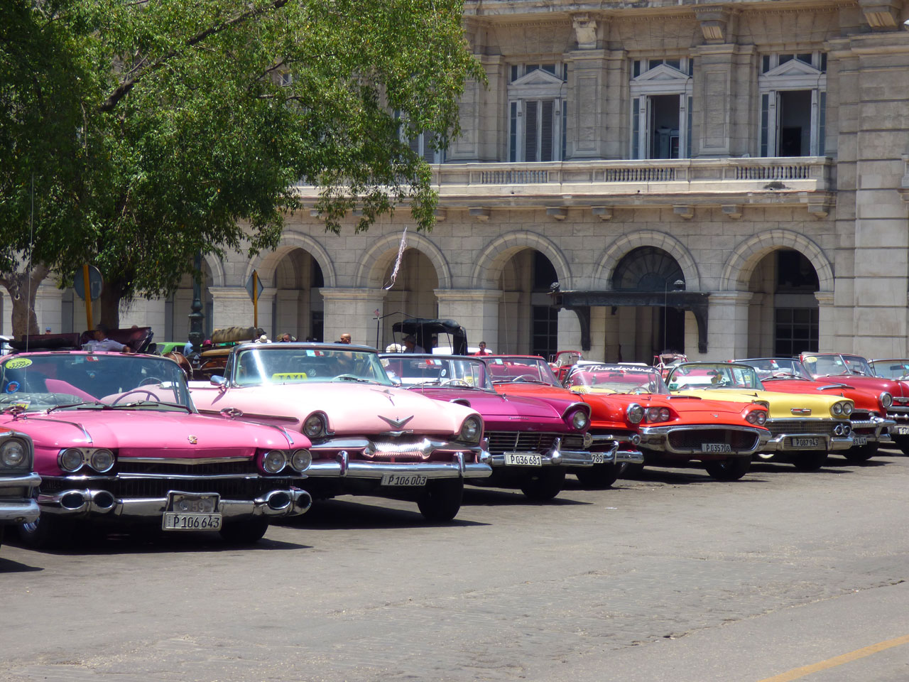 Classic cars lined up on the Prado, Havana