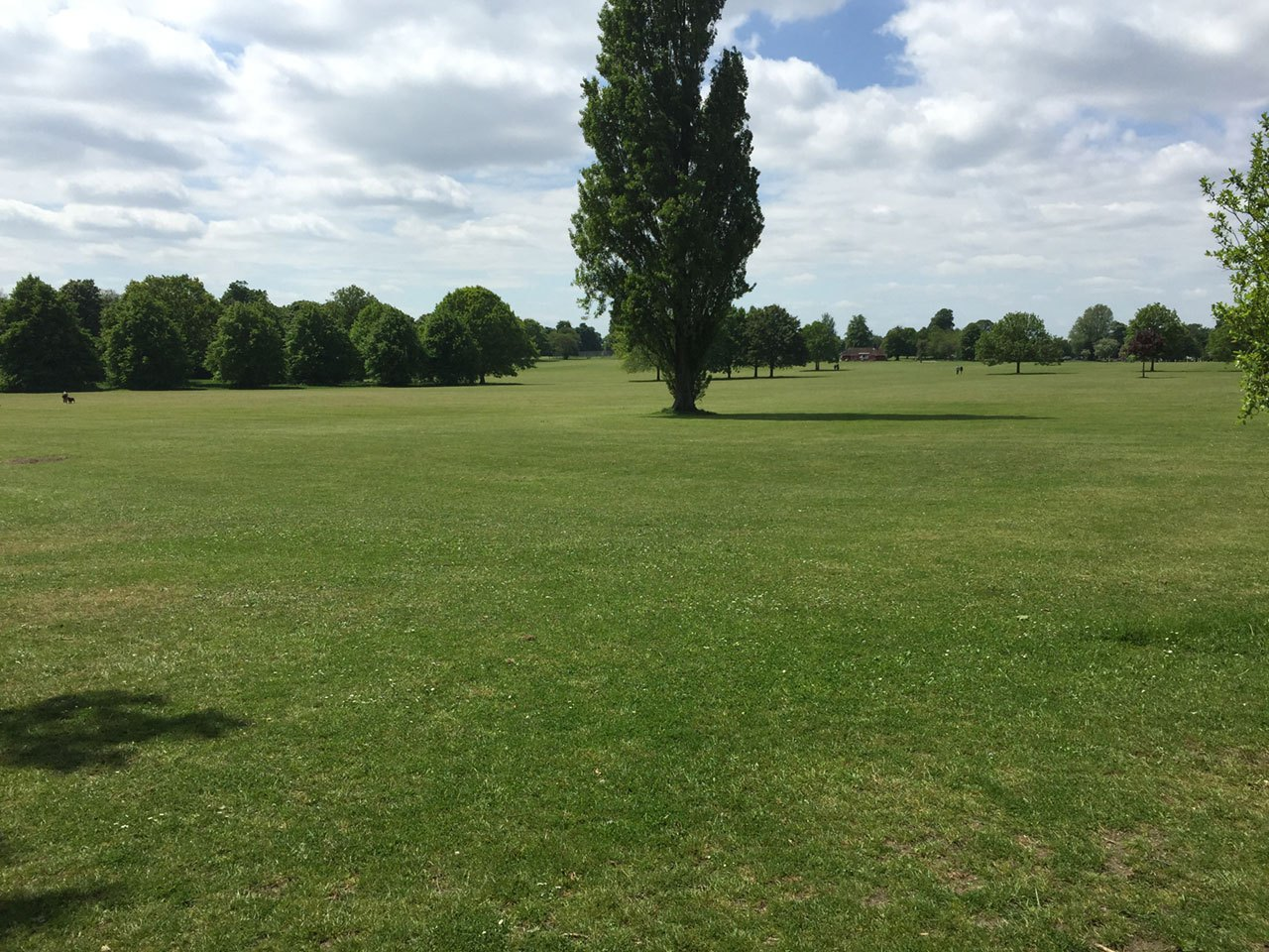 Eltham Park South, London