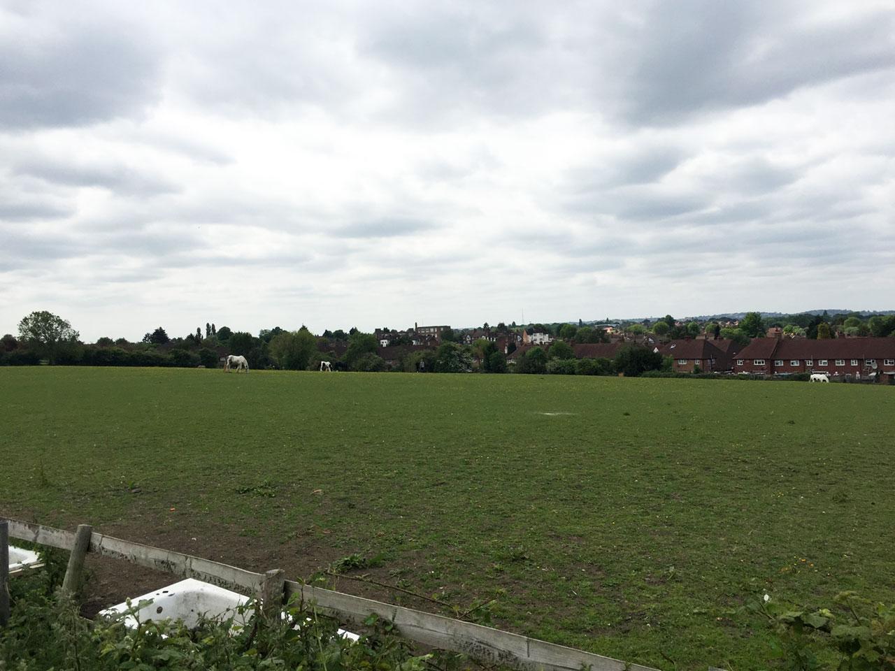 A paddock near Eltham Palace, London