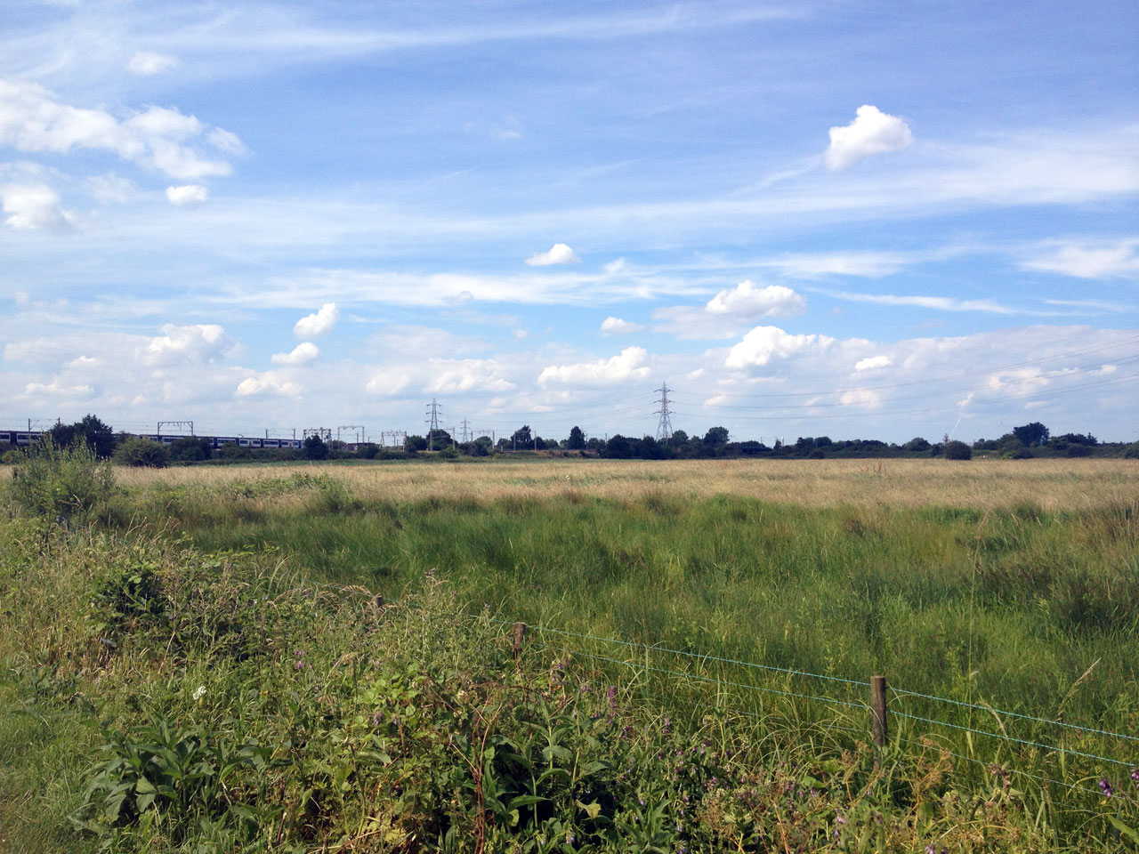 Walthamstow Marsh, Capital Ring Walk, London