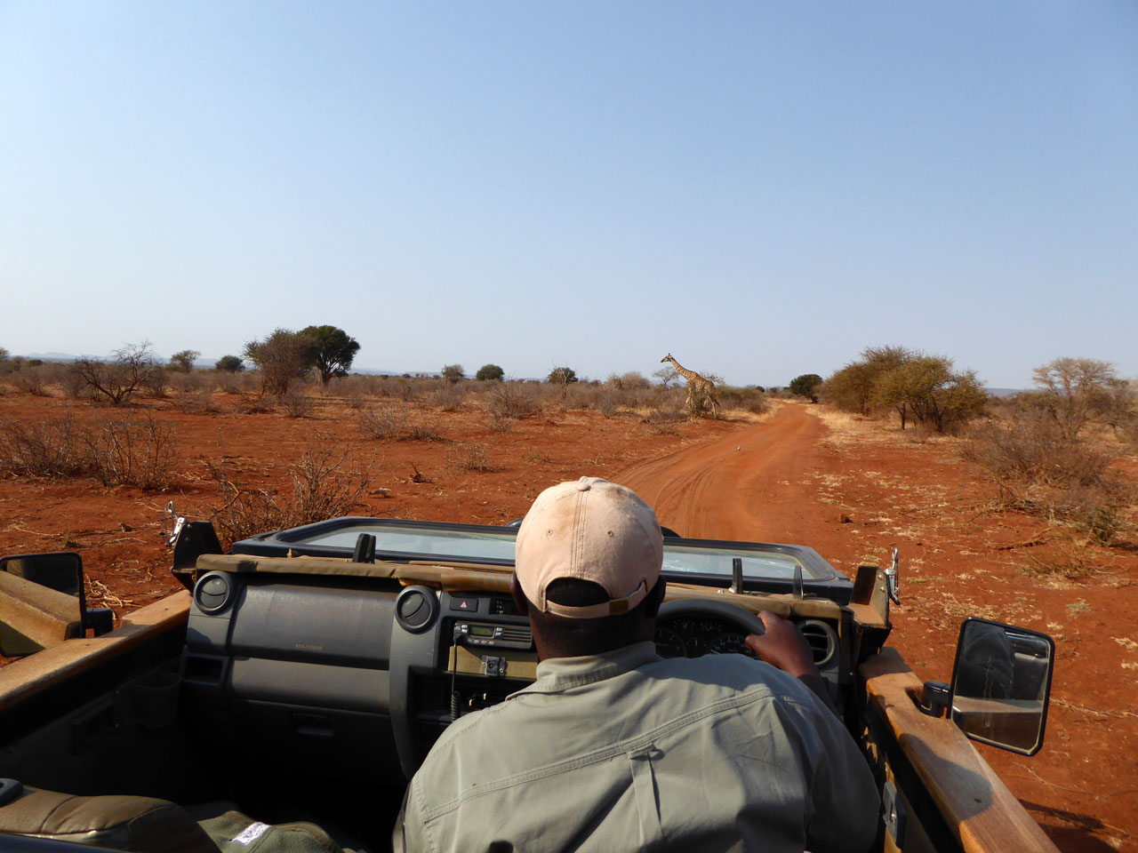 On safari in Madikwe Game Reserve, South Africa